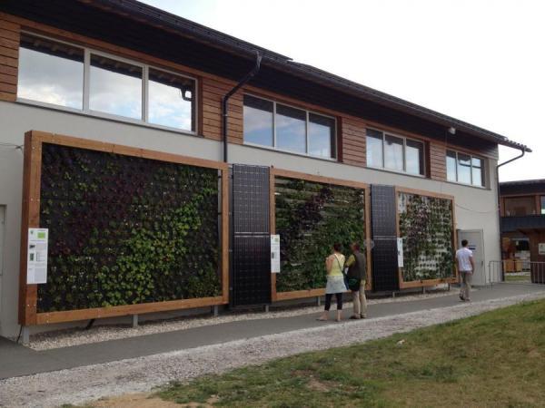 BAUWERKSBEGRÜNUNG trifft auf ERNEUERBARE und NACHHALTIGE ENERGIE- und BAUTECHNIK – eine neue Herausforderung für interdisziplinäres, integrales Planen und Bauen