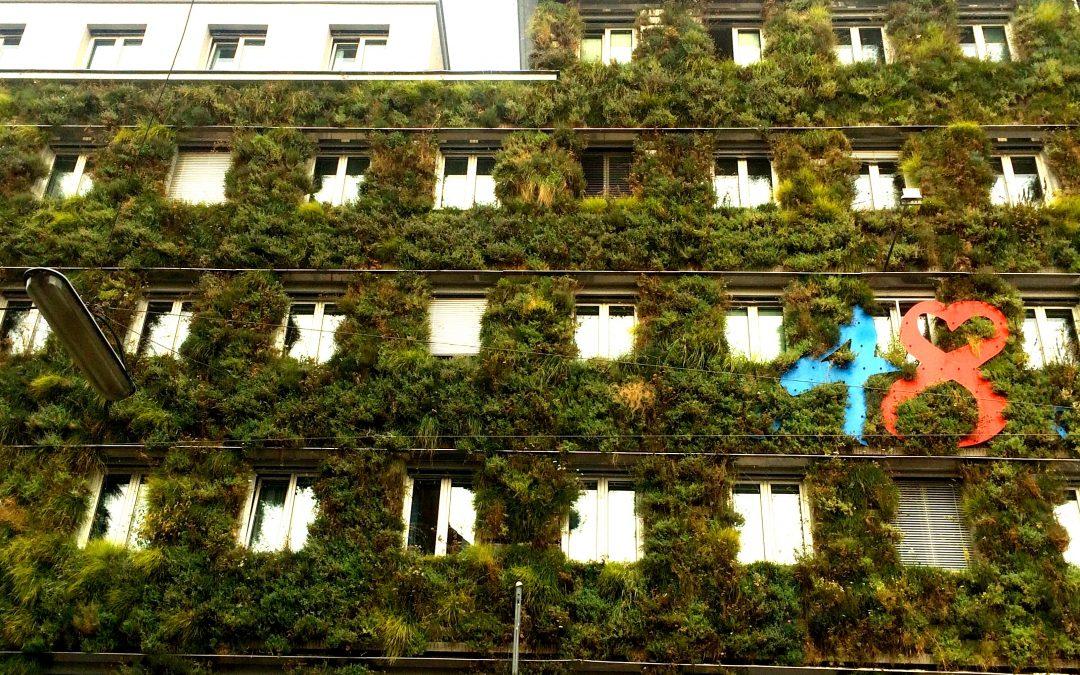Gemeinde Wien verpflichtet zu Massnahmen der Klimaresilienz
