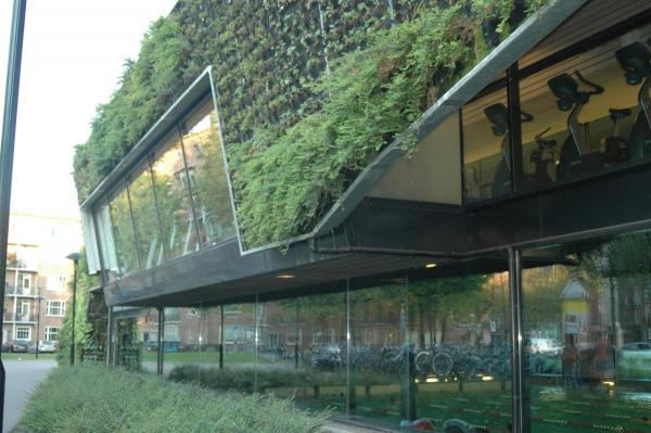 RED AS GREEN – THE CITY AS NATURE: Thoughts on an Urban Future