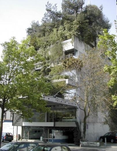 THE PIONEERS: TREE HOUSE, DARMSTADT 1970 : Ot Hoffmann