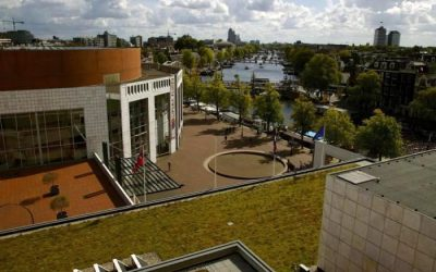 Amsterdam City Hall roof planted