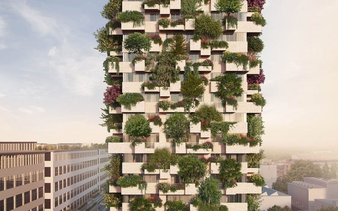 Ecology and a forest tower
