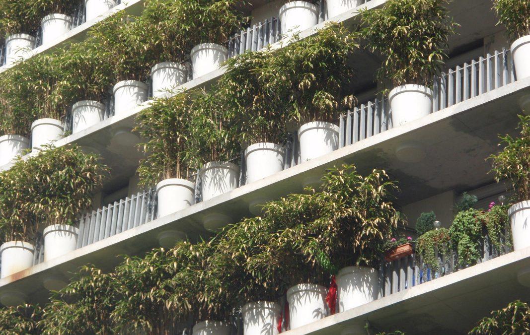 EINIGE BEMERKUNGEN ZUM FLOWER TOWER PARIS, Architect Eduard Francois