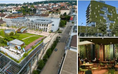 CONGRES MONDIAL DE LA CONSTRUCTION DE L'ENVIRONNEMENT 2020