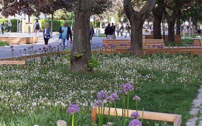Wien startet Ideenwettbewerb für Begrünung des öffentlichen Raums