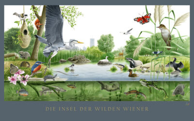 THE ISLAND OF THE WILD VIENNESE