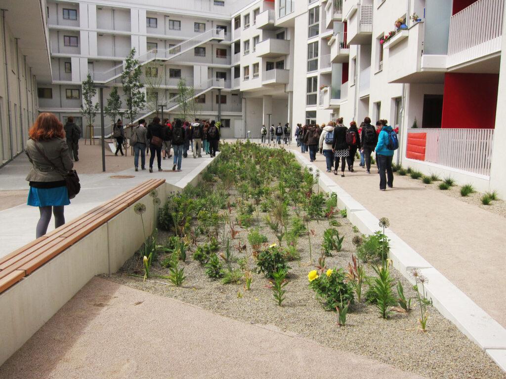 Regenwassermanagement -Oase 22 Raingarden mit Stauden Pitha